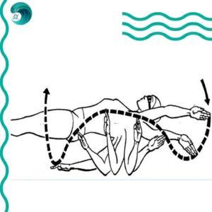 tehnika-plavaniya-krolem-na-spine-ruki