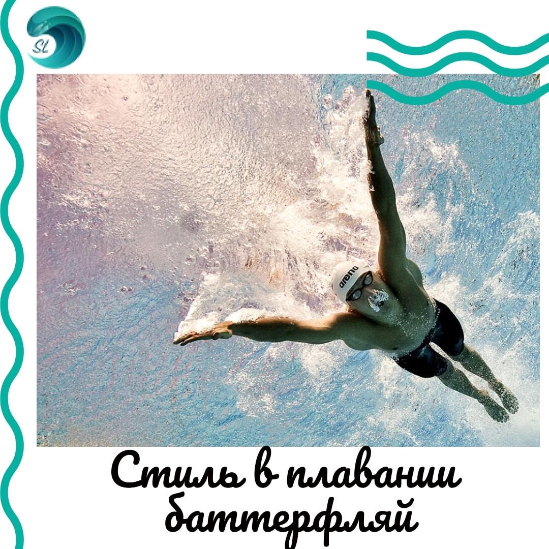 stil-v-plavanii-batterflyaj