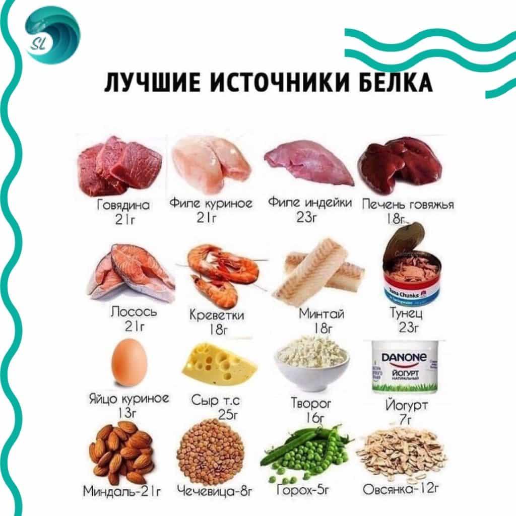 chto-est-pered-trenirovkoj-po-plavaniyu-belki